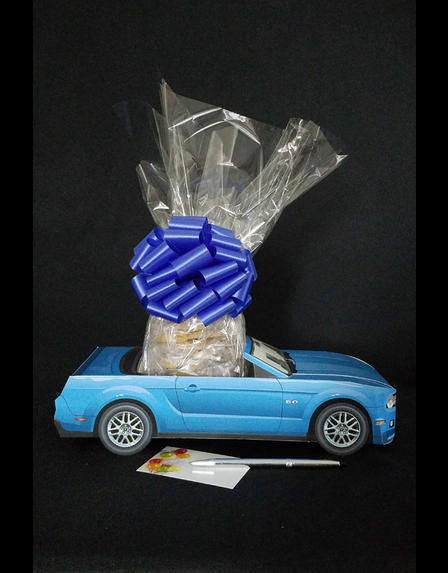 Blue Modern Car - 12 Cookies and Brownies