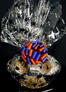 Large Basket - Graduation Cap Cellophane - Blue & Orange Bow - 36 Cookies and Brownies