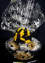 Large Basket - Graduation Cap Cellophane - Yellow & Black Bow - 36 Cookies and Brownies